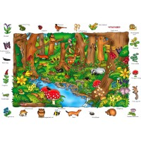 Animal Puzzle: Where in The Wood?