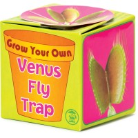 Grow your Own Venus Flytrap